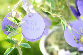 wedding wishes in korean invitations more photos purple wishing tree cards inside