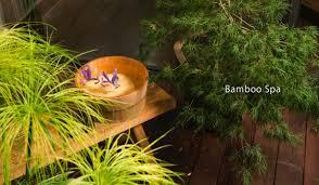 bamboo spa beauty salon
