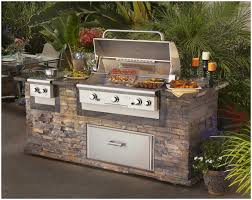 Backyards  Winsome Orlando Gas Bbq Grills Barbeque Fireplace - Backyard grill designs