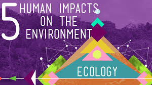 5 human impacts on the environment crash course ecology 10