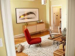 Shaggy Rugs For Living Room 32 Best Mid Century Modern Images On Pinterest Shag Rugs White