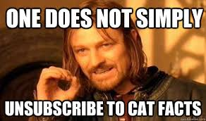 Cat Facts Meme - one does not simply unsubscribe to cat facts lord of the rings