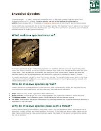 native alternatives to invasive plants article and movie questions invasive species