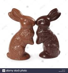 chocolate rabbits photo of two chocolate easter bunnies one milk chocolate