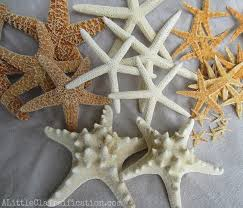 starfish decorations diy starfish garland a claireification