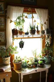 best 25 plant decor ideas on pinterest house plants home design ideas best 25 indoor plant decor ideas on pinterest