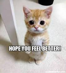 Feel Better Meme - meme creator hope you feel better meme generator at memecreator