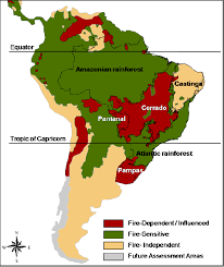 south america map rainforest sensitive dependent and fireindependent vegetation in
