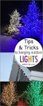 best 25 christmas lights display ideas on pinterest diy