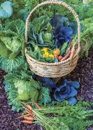passionate about produce phoenix home u0026 garden
