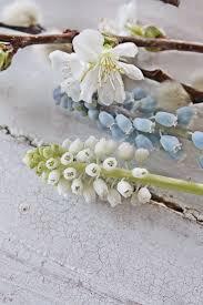 1016 best four seasons spring images on pinterest spring