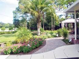 195 best gardening for wildlife south florida images on pinterest