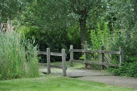 free images landscape tree path plant trail bridge lawn