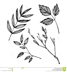 unique leaf drawing vector image free vector art images