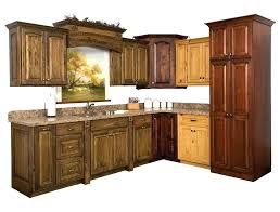 Kitchen Cabinets In Pa Amish Kitchen Cabinets Pennsylvania Faced