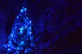 free images snow light night flower darkness blue