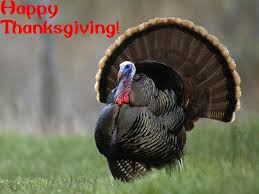 happy thanksgiving azerbaijani american cultural association