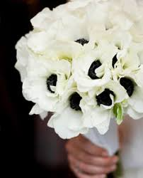 anemones flowers anemone wedding flowers