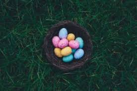 Easter Cookie Decorating Games by 2017 Easter Egg Hunt On The Hood River Fruit Loop W Packer Farm