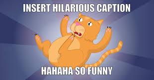 Cat Meme Generator - cat meme generator piday raspberrypi raspberry pi adafruit