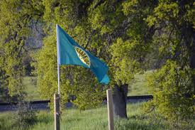 White Flag With Green Leaves State Of Dis Union Shows In Calexit State Of Jefferson Movements
