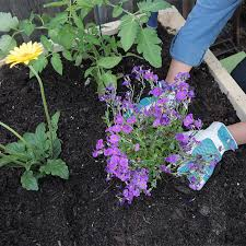 How To Build A Raised Flower Bed How To Build A Raised Garden Bed