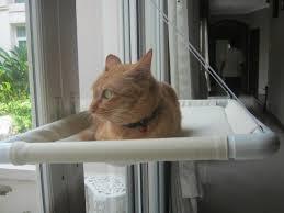 Window Sill Cat Bed 41 Cat Window Hammock 1pc Cat Basking Window Hammock Perch
