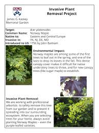 south central pennsylvania native plants invasive plants james g kaskey memorial park