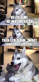 Funny Racist Mexican Memes - bad pun dog meme imgflip