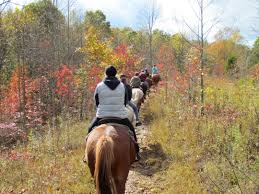 West Virginia how far can a horse travel in a day images Horseback riding in west virginia new river gorge cvb new jpg