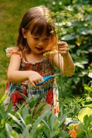 garden family 109 best the garden images on pinterest gardening garden and plants