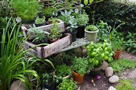 portable herb garden herb garden home outdoor decoration