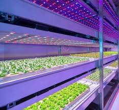 led grow lights what chinese led grow light brands are decent quora
