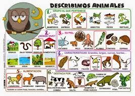 imagenes de animales y cosas mis cosas de educación especial aprendemos a describir personas