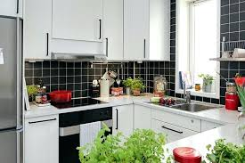 apartment kitchen decorating ideas fresh kitchen design small apartment with regard to 9136