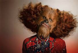 Chewbacca Memes - list of synonyms and antonyms of the word l oreal chewbacca