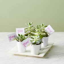 party favors for baby showers unbelievably baby shower favors you can make yourself