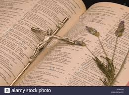 pressed lavender flowers with christian holy bible and cross stock