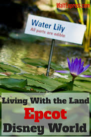 Living With The Land Ride by 17 Best Images About Walt Disney World On Pinterest Epcot Walt