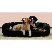 canapé pour chien grande taille tierlando ares très robuste chien canapé xl noir achat vente