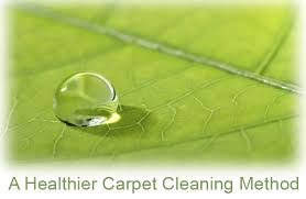 carpet and upholstery cleaning napa ca chem of napa valley