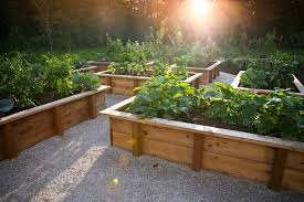 raised vegetable garden design small raised vegetable garden