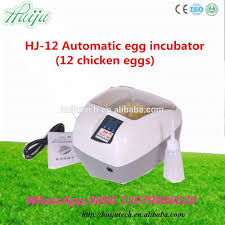 Used Cabinet Incubator For Sale Used Chicken Egg Incubator For Sale Used Chicken Egg Incubator