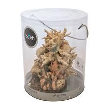 oase biorb aquarium ornament coral with sea shells