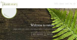 5 great online stores for indoor gardening home u0026 decor singapore