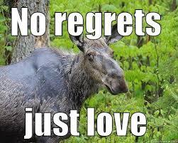Moose Meme - sexy moose quickmeme