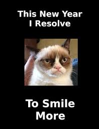Grumpy Cat New Years Meme - unlikely wish for grumpy cat funny pic new year eve jpg 288 373
