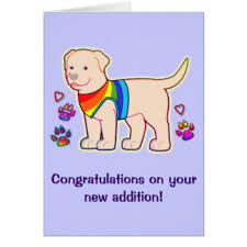 congrats on your new card congratulations on your new dog greeting cards zazzle