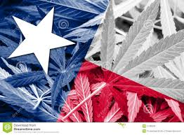 Texas State Flag Image Texas State Flag On Cannabis Background Drug Policy Legalization