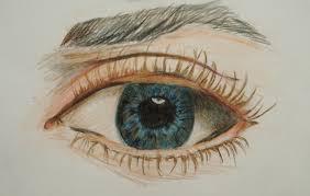 eye sketches watercolor pencil sweet artworks